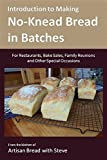 Introduction to Making No-Knead Bread in Batches (For Restaurants, Bake Sales, Family Reunions and Other Special Occasions): From the kitchen of Artisan Bread with Steve (English Edition)