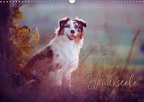 Hundeseele (Wandkalender 2019 DIN A3 quer): Hunde emotional fotografiert (Monatskalender, 14 Seiten ) (CALVENDO Tiere)