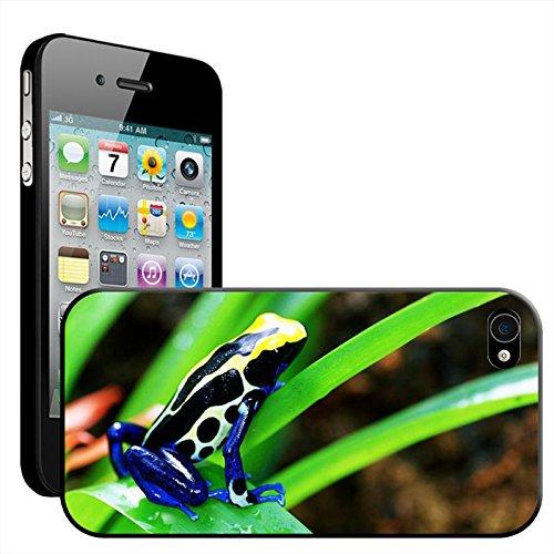 Fancy A Snuggle 'Grüner Frosch auf Blatt' Hard Case Clip On Back Cover für Apple iPhone 5C Costa Rican Cobalt Dart Frog