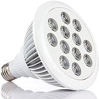 Lightess Lampada LED E27 24W per Coltivare Piante, Lampada per Coltivazione Idroponica per Giardinaggio in Serra, Piante, Fiori, Frutta, Vegetali, Risparmio di Energia del 70-80% - Acqua Nuvoloso