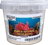 Agar Agar puro e naturale vegetariana 100g di gelatina (mezza Pot)