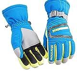 Winter Draussen Skifahren Handschuhe Windundurchlässig Wasserdicht Warm Fahrradhandschuhe,Blau (A),S