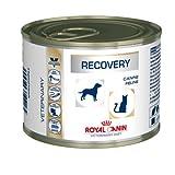 Royal Canin VET DIET Recovery Dosen 1 x 195 g