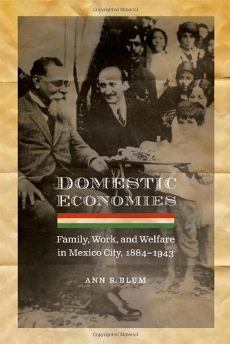 domestic-economies-family-work-and-welfare-in-mexico-city-1884-1943-engendering-latin-america