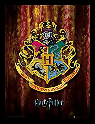 Poster Harry Potter 30 x 40 cm, Hogwarts Crest 2, 11.8-Inches x 15.7-Inches