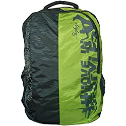 Skybags Pogo Plus 35 Ltrs Grey School Backpack (BPPOGP1GRY)