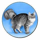 Silver Maine Coon Cat Fridge Magnet Stocking Filler Christmas Gift