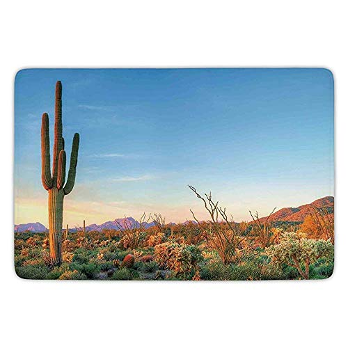 Bathroom Bath Rug Kitchen Floor Mat Carpet,Saguaro Cactus Decor,Sun Goes Down in Desert Prickly pear Cactus Southwest Texas National Park,Orange Blue Green,Flannel Microfiber Non-slip Soft Absorbent -
