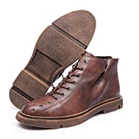 Jiahe Zipper-up Chukka Boots for Men Casual Low Boots Western Cowboy Boots lace up Ankle Boots-Brown