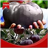 Portal Cool 100pcs / bolsa de carne de vaca gigante Negro híbridos de tomate Semillas orgánicos de la herencia del jardín
