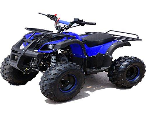 Zoom IMG-3 quad hummer panda 125 cc