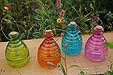 Glas Wespenfalle–Groß 15cm Durchmesser. Garten Insektenfalle [Cyclamen]