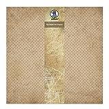 Ursus 40870001 - Scrapbook paper Vintage, ca. 30,5 x 30,5 cm, 5 Blatt, Punkte