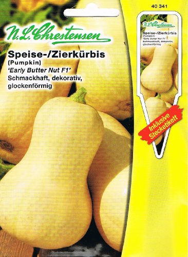 Speisekürbis / Zierkürbis Early Butter Nut F1 (Portion inklusive Stecketikett)