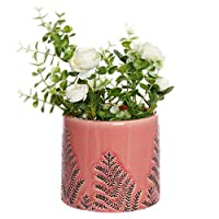Dibor Pink Crackle Glaze Ceramic Indoor House Plant Pot for Herbs, Flowers, Succulents - W13cm