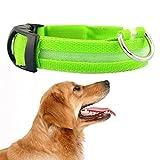 LED-Hundehalsband, Alihoo Leuchtendes Halsband, über USB aufladbar, Leuchtendes Hundehalsband für Sicherheit bei Nacht, geeignet für Halsumfang von 37cm-46cm (Geschenk führte Licht)