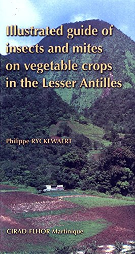 Illustrated Guide of Insects and Mites on Vegetable Crops in the Lesser Antilles (QUAE GIE) (English Edition)