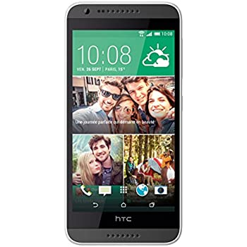HTC Desire 620 LTE Smartphone, 8 GB, Grigio [Italia]