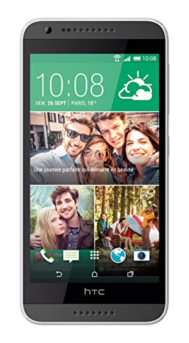 HTC-Desire-620-Smartphone-entsperrt-4G-Display-114-cm-5-Zoll-8-GBo-einfache-SIM-Android-44-KitKat-Grau
