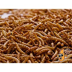 Chubby Mealworms Dried Mealworms, 3 Litre