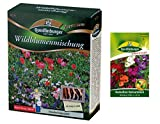 Wildblumenmischung | Blumenwiese | 1x Kamelien-Balsaminen kostenlos (schneckenresistent) | ohne Gräser