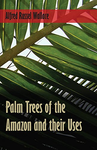 palm-trees-of-the-amazon-and-their-uses
