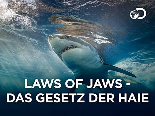 Laws of Jaws - Das Gesetz der Haie -