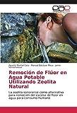 Remoción de Flúor en Agua Potable Utilizando Zeolita Natural: La zeolita sonorense como alternativa para remoción del exceso de flúor en agua para consumo humano