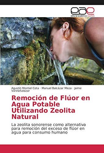 Remoción de Flúor en Agua Potable Utilizando Zeolita Natural: La zeolita sonorense como alternativa para remoción del exceso de flúor en agua para consumo humano por Agustín Montiel Cota