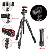 Manfrotto Trepied Befree MKBFRA4-BH Compact et Leger