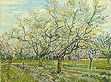 wieco Art–Die weiß Orchard von van Gogh berühmten Öl Gemälde Reproduktion Modern gespannt und gerahmt Landschaften Kunstwerke Giclée-Kunstdruck auf Leinwand grün Bilder auf Leinwand Art Wand für Home Dekorationen van-0014