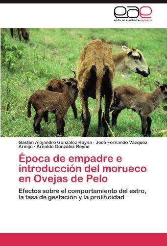 Descargar Libro Época de empadre e introducción del morueco en Ovejas de Pelo de González Reyna Gastón Alejandro