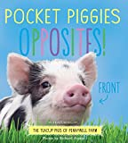 POCKET PIGGIES - OPPOSITES