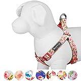 Blueberry Pet Step-In Hundegeschirr Frühlingsduft Inspiriertes Rosenblütenmuster in Baby-Pink Hundegeschirr mit Zugentlastung Verstellbar, Nylon 51-66cm Brust, Passender Hundehalsband & Hundeleinen erhältlich separate