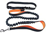 DXABLE Cuerda de perros para correr libre, correa de tirador para correr duradera Jogging Caminar Senderismo -Reflective costura Longitud ajustable 60 'hasta 75' -Waist cinturón de 28 'a 48' (Naranja)