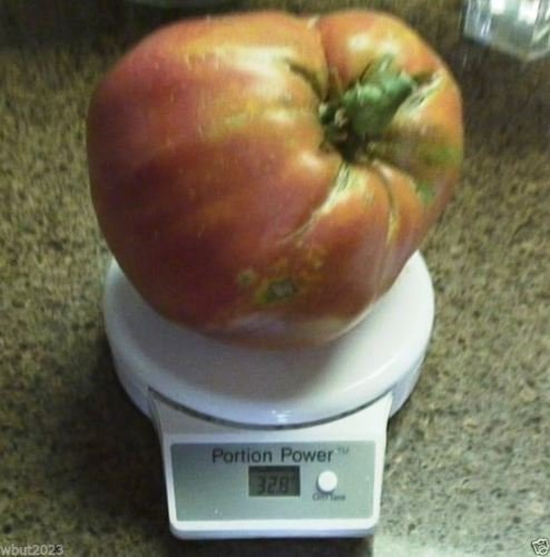 Coeur de tomate Graine hongroise, Alias, Oxheart Tomatoe, Open Pollinated! Énorme tomate! (250 graines)