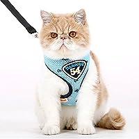 Katzengeschirr mit Leine 1,38m Soft Atmungsaktives Farben,Blau,M