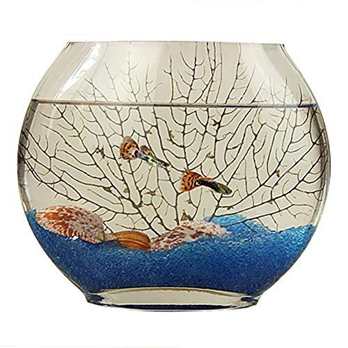 Mini-Aquarium Goldfisch-Tank für Aquarien, mit flacher Öffnung aus Glas, oval, superweiß, transparent Modern 25 cm rot