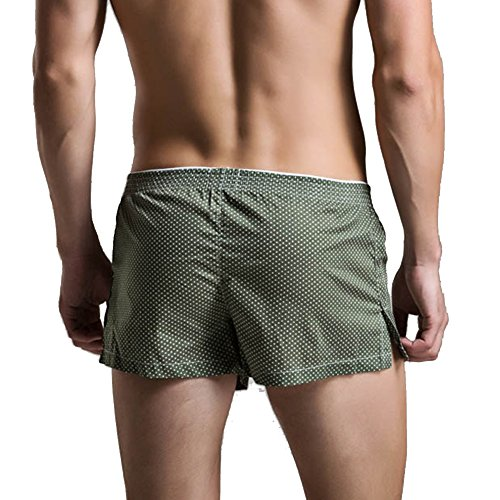 Feicuan Uomo Cotton Breathable Boxer Briefs Underwear Pantaloncini -L21 Green