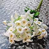 display081Bouquet 60Köpfe Künstliche Fake Campanula Blume Flower Leaf Blatt Hochzeit