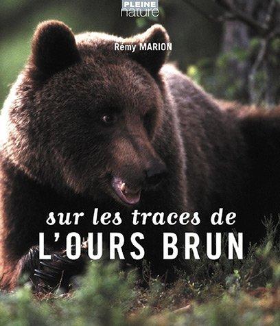 Sur les traces de l'ours brun par Rémy Marion