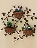 Stand de planta Estantería de flor, pared de hierro creativa europea colgante...