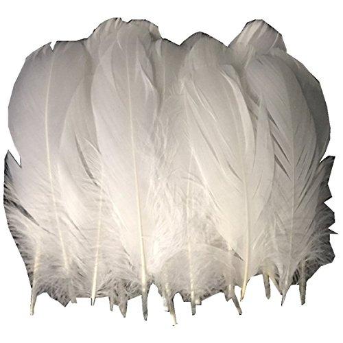 ERGEOB® Echte große Gänsefedern in Weiß / 15-22cm Federnlänge, 100 Stück pro Verpackung, 21 Farbvarianten, Fasching, Karneval, Basteln, Dekoration, Hochzeit.