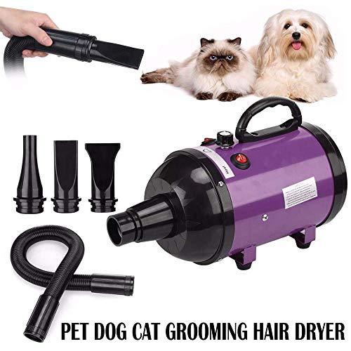 FXQIN 2600W Hundepflege Haartrockner, Haustier-Haartrockner mit Heizung, stufenlos einstellbare Geschwindigkeit/Federschlauch/Geräuschreduzierung, für Hunde, Katzen, Großtiere, Lila,Britishplug