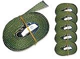 6 Spanngurte Zurrgurte 250kg 2.5m 4m 5m 6m mit Klemmschloss Schnellspannung (2.5m, oliv)