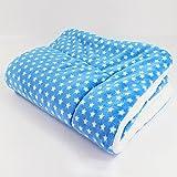 Global- Winter Doghouse Matte / Lamm Kaschmir Blanket / Pet Blanket Quilt / Puppies Decke Katze Steppdecke / Widerstand zu beißen starke dicke Baumwolle Pad ( größe : 55*42cm )