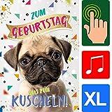 'bentino tarjeta de felicitación A4'Perro, cumpleaños, con pelo para afectividad, con sonido, ladrido, streichel Función, serie Great Cards, tarjeta de alta calidad con sobres