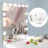 Ovonni DIY Vantity Mirror Lights Bulbs Strips Kit for Lighted Makeup Dressing Table Mirror Plug in LED Lighting Fixture with Dimmer and USB Power Supply (Bulbs Kit)