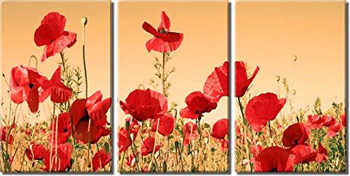 Bild Sensations gerahmt Große 3-Panel Blumenmuster Art Flower Field rot Poppy Giclée-Druck auf Leinwand -