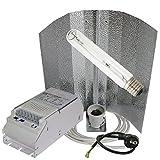 600W Natriumdampflampe Bausatz Growset für die Blüte Pflanzenlampe NDL